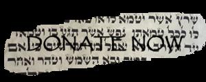 Donate-Now-Torah